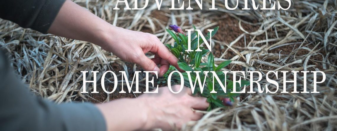 Adventures in Home Ownership: Part 1 Weeds